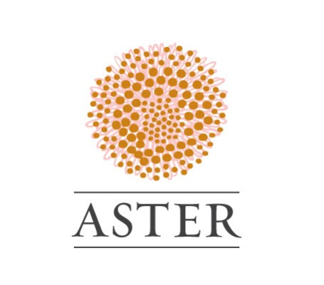 7585 geodir logo aster san francisco logo