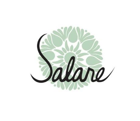 30633 geodir logo salare seattle wa logo