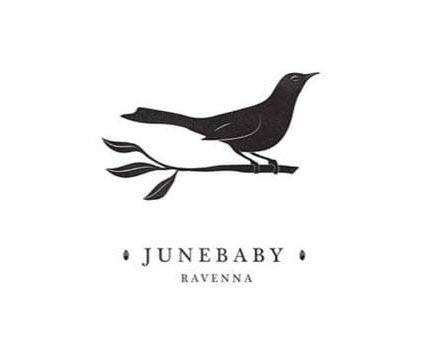 31174 geodir logo junebaby seattle logo 1
