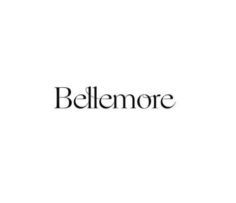 32498 geodir logo bellemore chicago logo 1 1