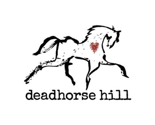 34452 geodir logo deadhorse hill worcester ma logo 1 1