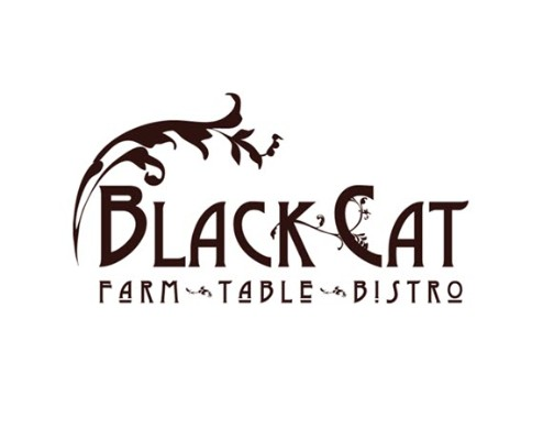 9759 geodir logo black cat boulder co logo 1