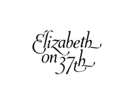 14430 geodir logo elizabeth on 37th savannah ga logo 1