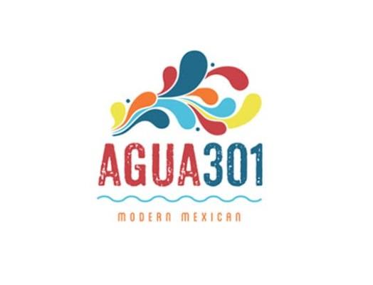 37662 geodir logo agua 301 washington dc logo 1