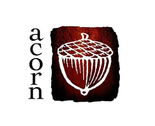 acorn denver co logo 1 1