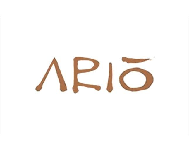 ario marco island fl logo 1 1