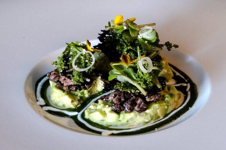 evo contemporary mexican cuisine san antonio tx food 1 1 768x512
