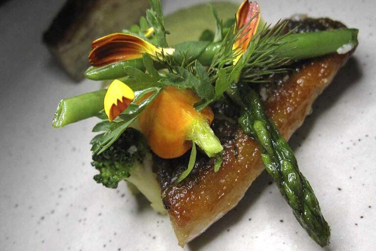 evo contemporary mexican cuisine san antonio tx food 4 1 768x512