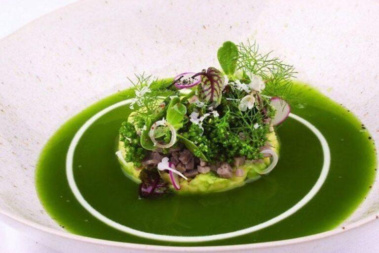 evo contemporary mexican cuisine san antonio tx food 5 1 768x512